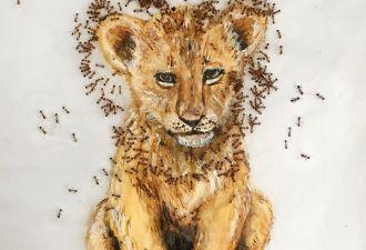 Художница из ЮАР пишет картины совместно с муравьями. Получается эффектно, но даже они требуют зарплату