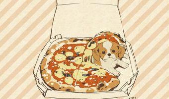 Пёс с Тайваня настолько толстый, что сожрёт тебя следующим. Просто всё остальное он уже съел