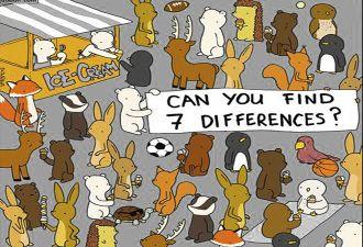 Художник предложил людям найти семь отличий на картинках с животными. Вглядываться придётся долго