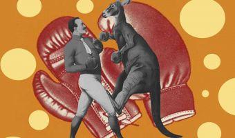 Злющий кенгуру избил целую семью в Австралии. И этот сумчатый дерётся круче Конора и Хабиба