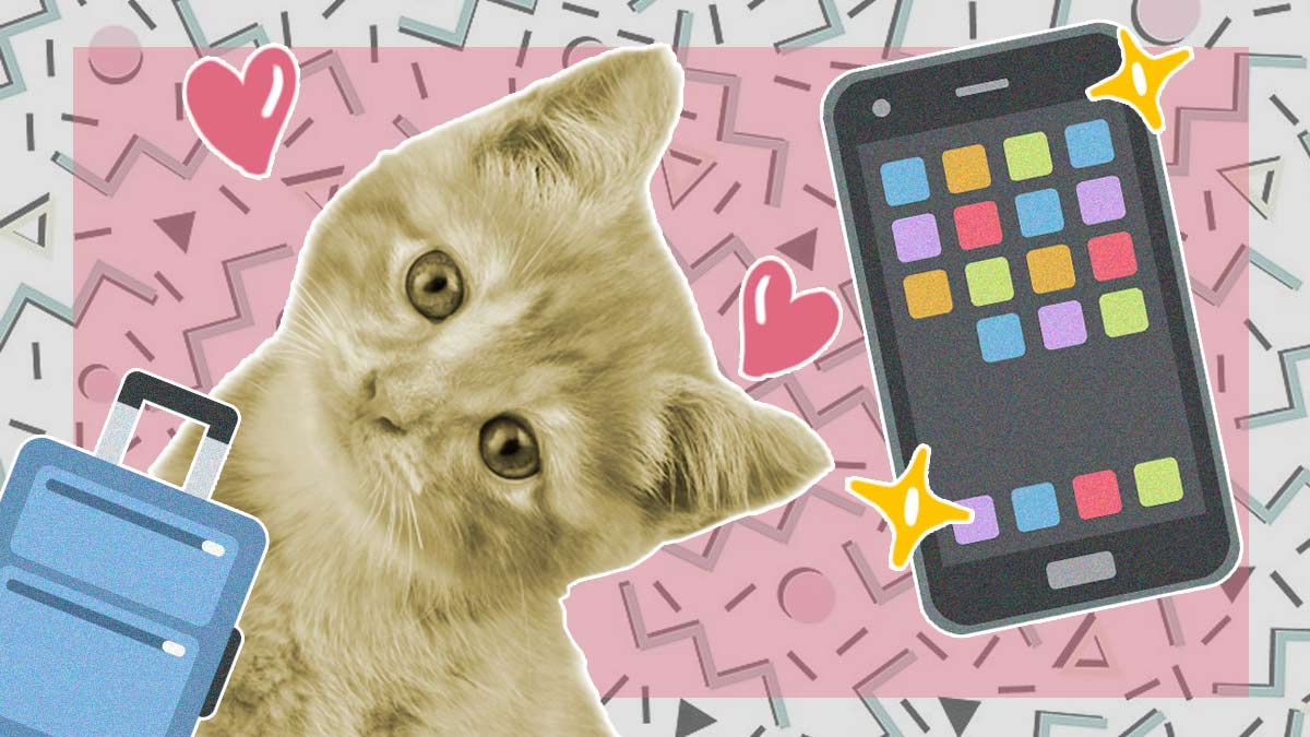 Чемодан гаджетов, котики и Fortnite. Как выглядит и работает игровой смартфон