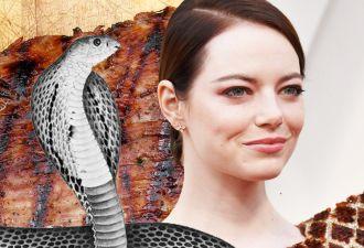 Эмма Стоун в платье для «Оскара» скосплеила курицу, бекон и шаурму. Осторожно, она вызывает чувство голода