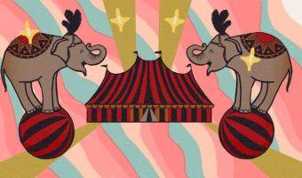 Цирк отказался от использования животных, но его выручка стала только выше. Весь секрет в высоких технологиях