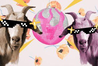 Парочка диско-козлов всколыхнула интернет. С их чувством ритма впору отплясывать на Бродвее или давать уроки