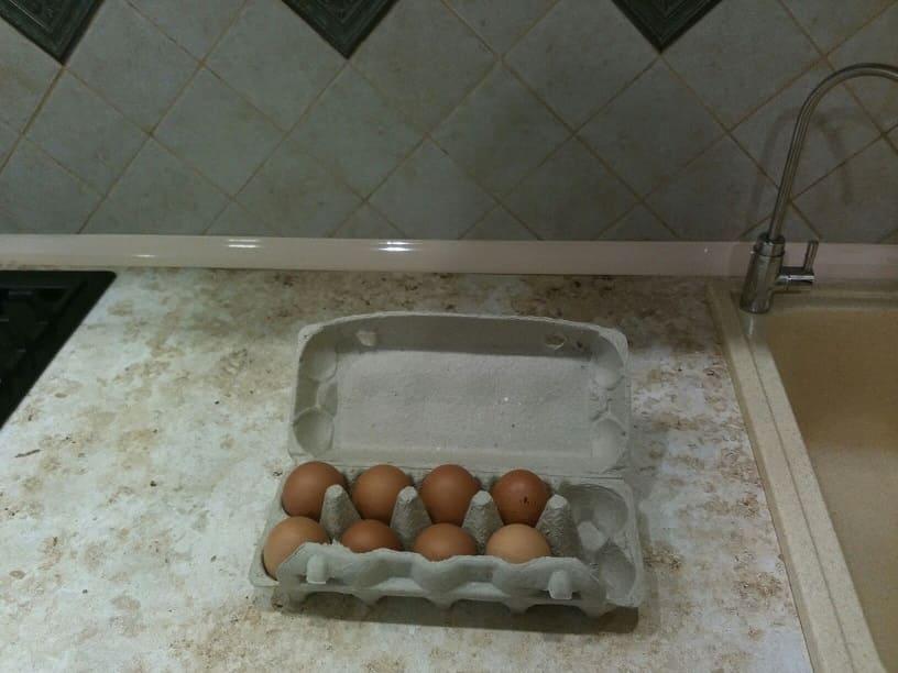 Если поставить яйцо во время затмения, оно не упадёт. Мы провели эксперимент и узнали, как победить гравитацию