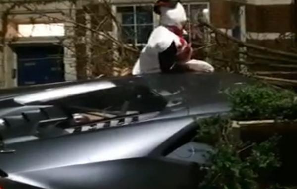 Снеговик на Lamborghini залетел на рождественский ужин к девушке. Но поздравлений она не дождалась