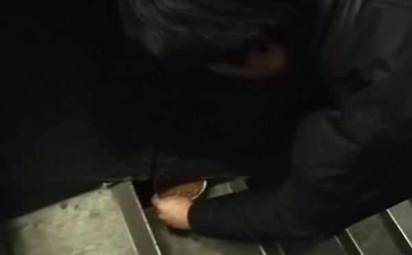 Котейка угодил в западню и застрял в стене торгового центра, но его спасли. Правда, на это ушло два года
