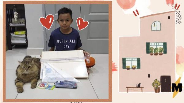 Отец разрешил маленькому сыну сделать ремонт в доме по-своему и не прогадал. Ребёнок дал фору архитекторам