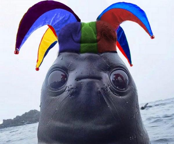 Люди увидели тюленя снизу вверх, и это просто так не забыть. Одна поправка - и вышел идеальный пришелец-мем