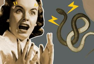 Новый коронавирус из Китая прятался в деликатесах. Во всём виноваты змеи — и всеядные жители Уханя