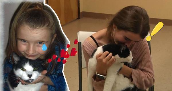 Сбежавший кот подтолкнул девочку устроиться в приют для животных, когда она вырастет. Именно там он её и ждал