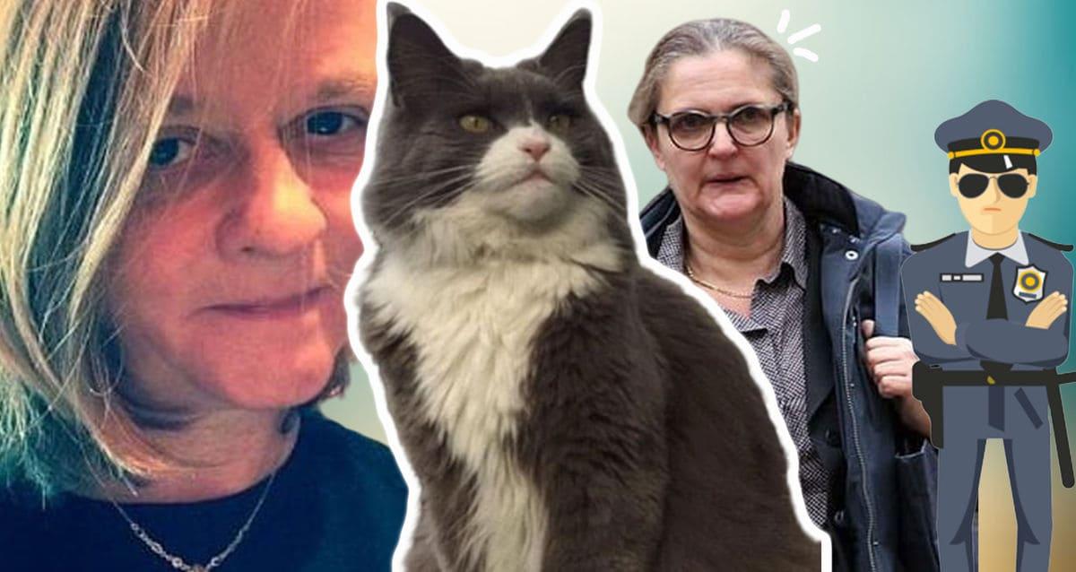 Женщина покормила кота на улице и поплатилась за это целым состоянием. У котея нашёлся хозяин - и ревнивый