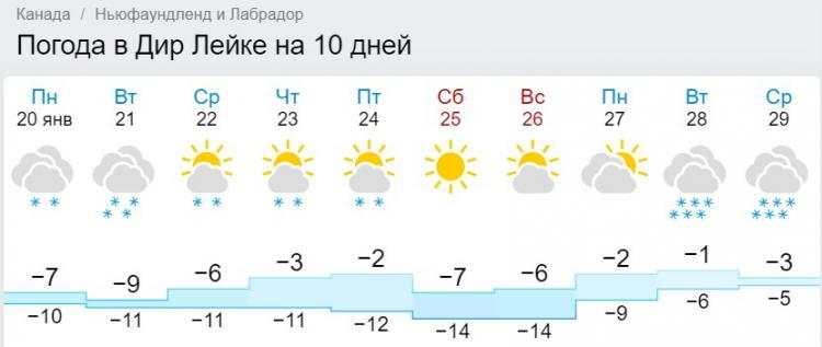 Канада утопает в трёхметровых сугробах, а россияне яростно завидуют.