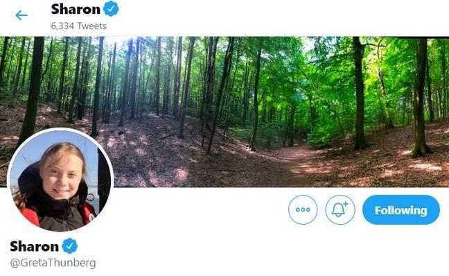 Она вам не Грета. Экоактивистку теперь зовут Шерон, и шутка зашла так далеко, что её оценила и сама Тунберг
