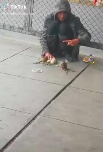 Бездомного мужчину легко принять за нового злодея из Готэма. Его сообщники - крысы, и они умеют делать всякое