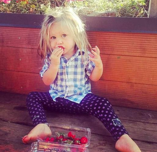 Мать разрешила трёхлетней дочке не пользоваться расчёской. И за причёску малышки её обвиняют во всех грехах