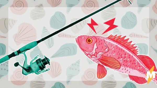 Девушка рыбачила и достала со дна водоросли, но немного перепутала. Они были живыми и приносили страдания