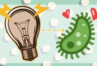 Учёные нашли новый способ добывать электричество, и это пахнет прорывом. Требуются только воздух и бактерии