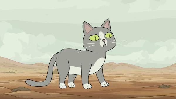 Всем тихо - кошка будет говорить. Тиктокер заснял, как его котейка промяукала целую фразу на английском