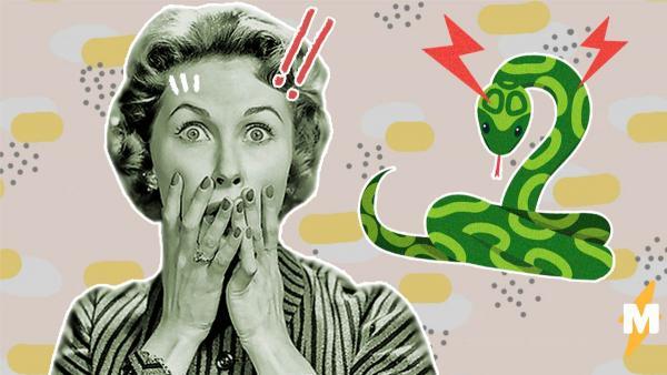 Змея напугала жильцов дома, но рассмешила змеелова. За рептилию приняли предмет гардероба, который есть у всех
