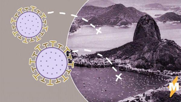 В Бразилии нашли неизвестный науке вирус. Учёные смогли лишь придумать ему красивое имя