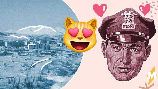 МВД Якутии пишет о счастливых кошках, телефоне в сапоге и свиданиях. И это самый добрый официальный твиттер
