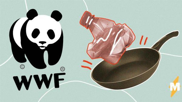 Повара показали, как готовить еду с тёртым пластиком. И это не безумие, а реальная экологическая проблема