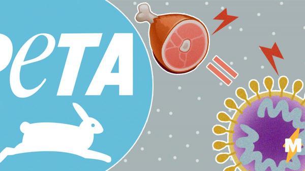 Организация PETA обвинила мясоедов в распространении коронавируса. Но люди уверены, злодеи - сами зоозащитники