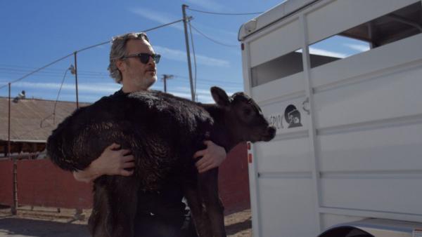 Хоакин Феникс снялся в новом фильме. И случайно подружился с хозяином скотобойни – всё ради хорошего дела