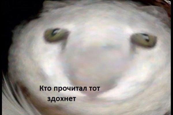 """""""Электронный концлагерь"""". Выход из дома по QR-коду и тотальная слежка напугали москвичей (не) на шутку"""