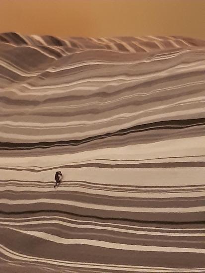 """""""Я вижу, как кто-то бежит по песчаным дюнам"""". Иллюзия сломала людям голову, ведь пейзаж оказался натюрмортом"""