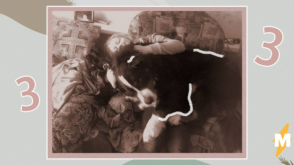 Девушка потеряла собаку, а три года спустя увидела её вновь. Вот только такая встреча разбила хозяйке сердечко