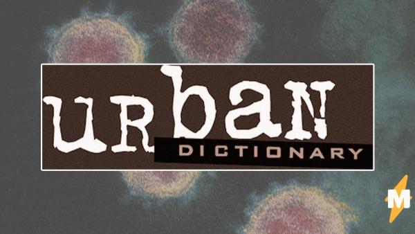 В Urban Dictionary появился новый термин — «ковидиот». Теперь так называют паникеров, пофигистов и эгоистов