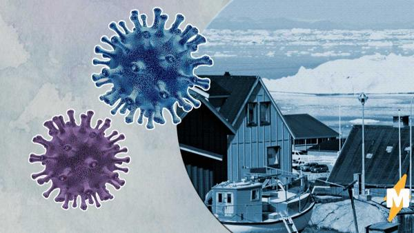 Коронавирус уже в Гренландии, и это удар для фанов Plague Inc. Надежда на Мадагаскар есть, но призрачная