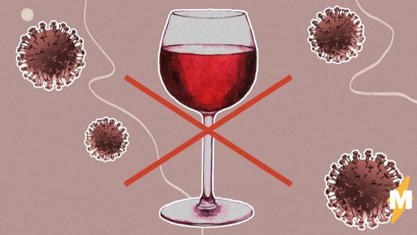 Коронавирус способен лишить Россию алкоголя. Похоже, закупаться надо не гречкой