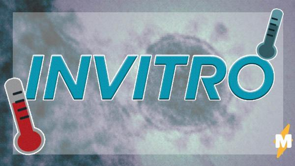 """""""Инвитро"""" начнёт делать тесты на коронавирус. Ждать результата надо будет от двух дней"""