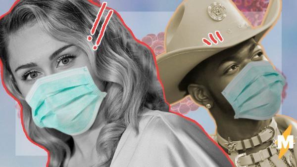 Звёзды тоже люди: Свифт борется вирусом в Instagram, Арни учит собаку мыть лапы, а Lil Nas X - тот ещё добряк