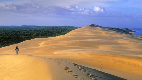 """""""Я вижу, как кто-то бежит по песчаным дюнам"""". Иллюзия сбила людей с толку, ведь пейзаж оказался натюрмортом"""