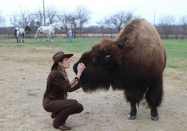 Дерзкий бизон вмешался в съёмку репортёра, но лишь сделали её лучше. Реакция парня бесценна и теперь мем