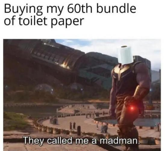 Покупатели сметают туалетную бумагу, но мемоделы не отстают. И высмеивают истерию упоротыми шутками