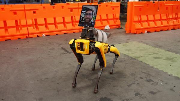 Те самые роботы из Boston Dynamics присоединились к борьбе с COVID-19. И выглядят они криповее обычного