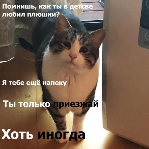 """""""Хотите, я вам ещё праздник сделаю?"""" Владимир Путин придумал, как порадовать медработников, а люди смеются"""