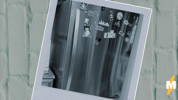 Фото нового холодильника заставило плакать тысячи людей. На снимке вся боль и радость взрослой жизни