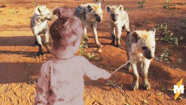 Девочка нашла новых друзей, и они те ещё гиены (буквально). Она своя в стае хищников, и даст фору даже Маугли