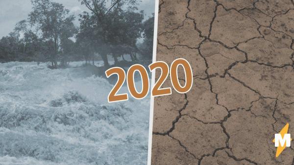 У 2020 года ещё есть козыри в рукаве. За коронавирусом последуют засуха и голод, а там и саранча подтянется