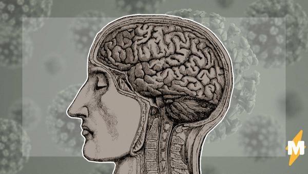 Минздрав России заявил, что коронавирус способен поразить мозг и ЦНС. И потеря обоняния - опасный симптом