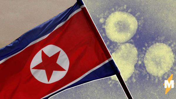 Врачи Северной Кореи заявили, что в стране нет коронавируса. Зато там жёсткий карантин
