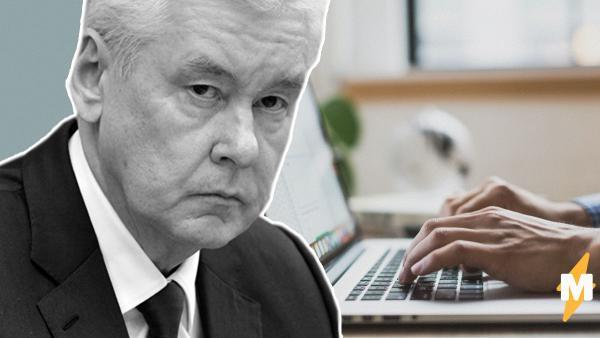Собянин дал инструкцию москвичам, которые потеряли работу в период пандемии. Сайт центра занятости сразу упал