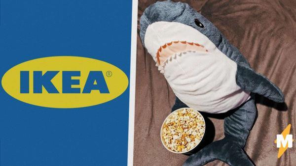 Мемная акула из IKEA заскучала на карантине и завела дневник. Теперь у всех есть шанс повлиять на её судьбу
