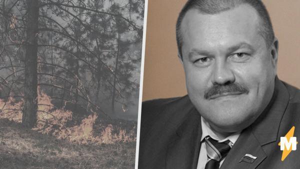 Мэр Усть-Кута якобы поймал чиновников на поджоге леса. И люди в соцсетях уже готовы казнить госслужащих